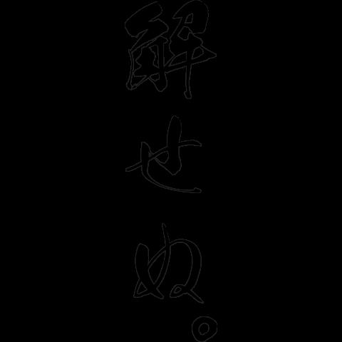 解せぬ。|デザインTシャツ通販【...