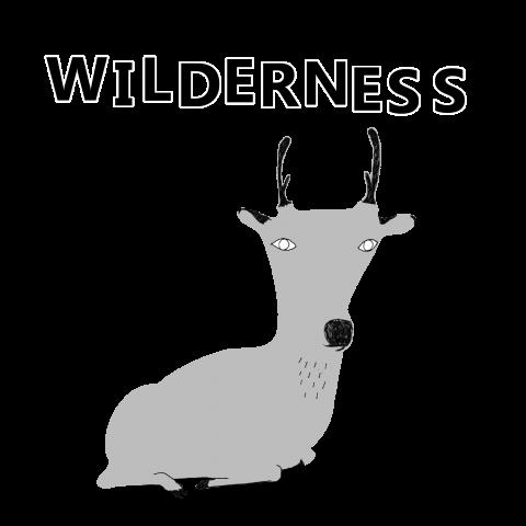 アウトドアTシャツ「wilderness」