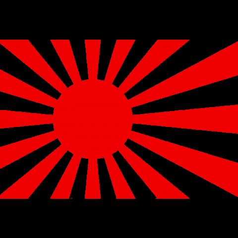 旭日旗(軍艦旗)