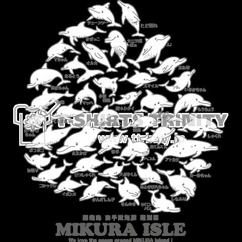御蔵島のミナミハンドウイルカ個体識別40頭(前面)
