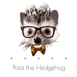 Pota the Hedgehog
