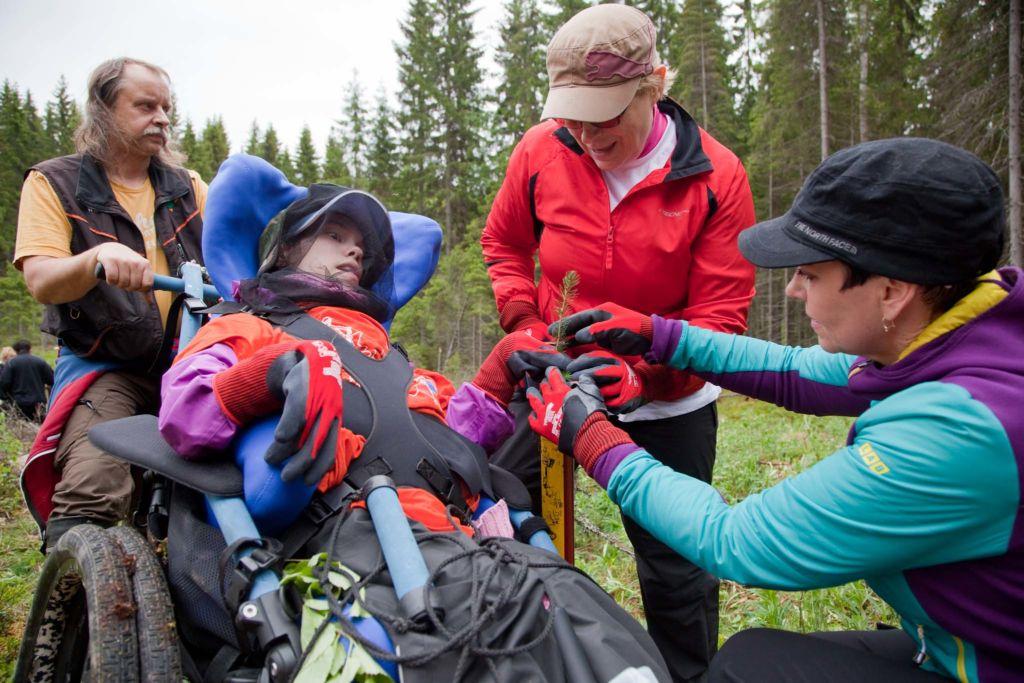 Sanni Rauhala laittaa kuusentaimen Tuula Piiroisen ja Tanja Taurian (oik.) pitelemään pottiputkeen. Kari Mäkinen seuraa tilannetta.