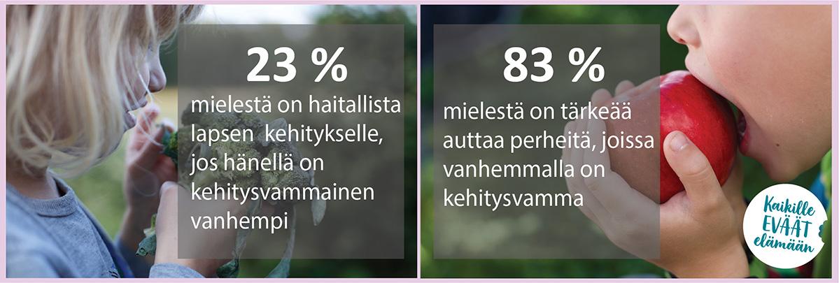 tilastotietoa kyselystä