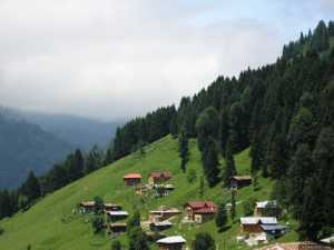 Houses in Ayder, Rize
