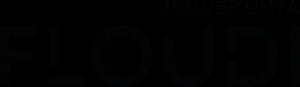 Floudi_2017_valkoinenpohja