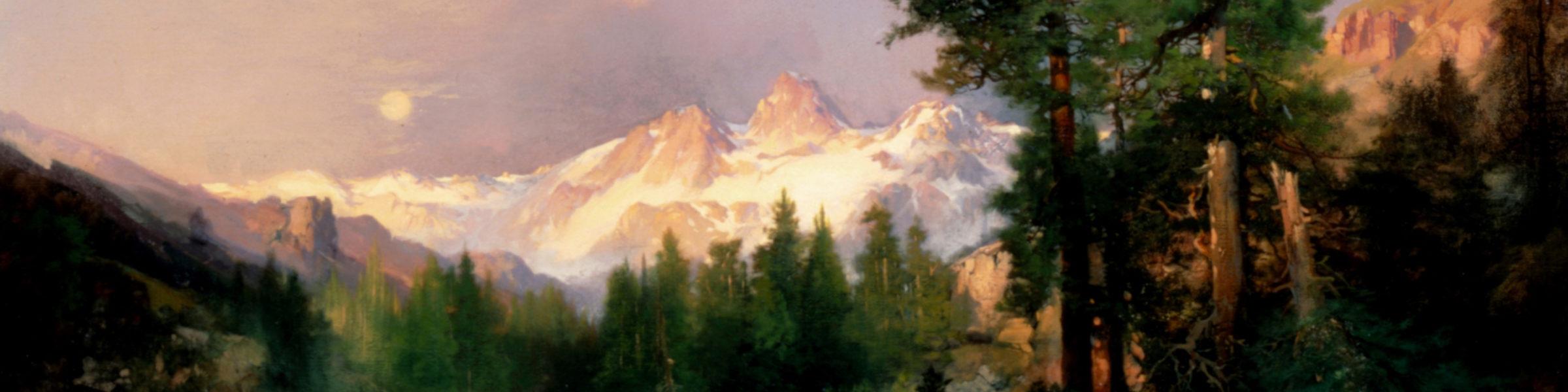 The wilderness pod banner