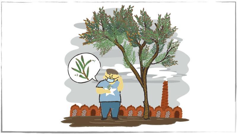 真的假的?植物可以預警空汙和地震?