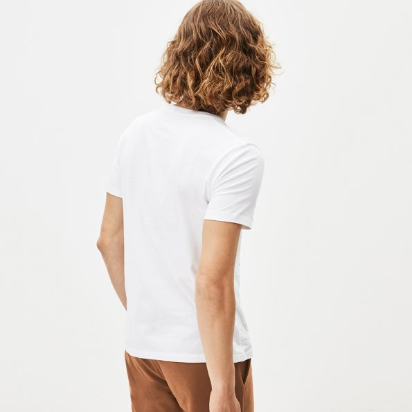 2a8d8072-camiseta-para-hombre-pecruises-celio46.jpg