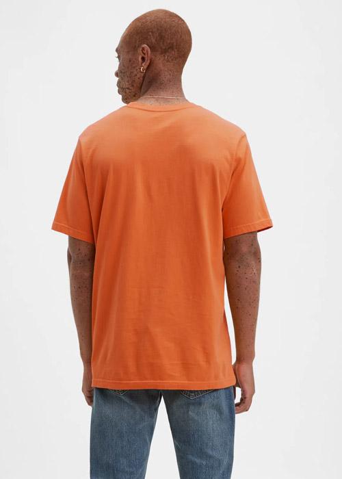 Camiseta Levis Hombre LM13275202 – 201020 -2