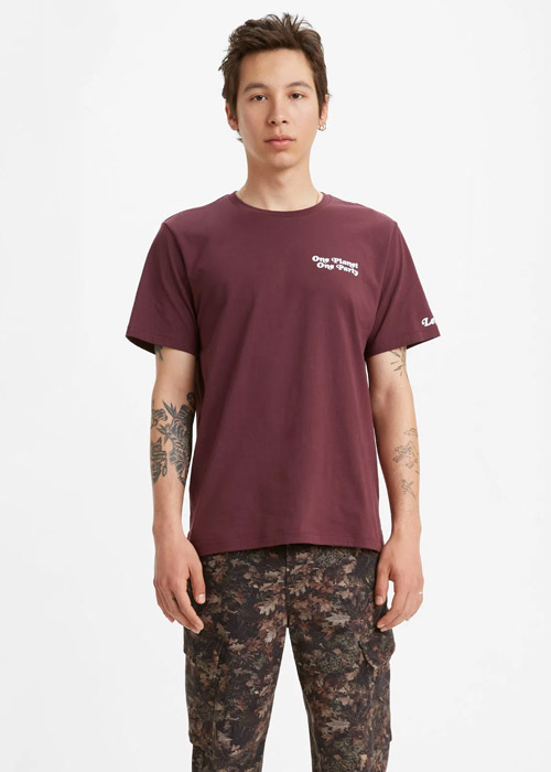 Camiseta Levis Hombre LM13491202 – 199136 -1