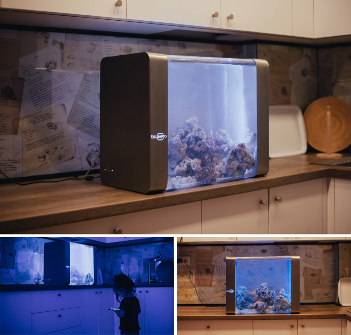 smart aquarium in 2019