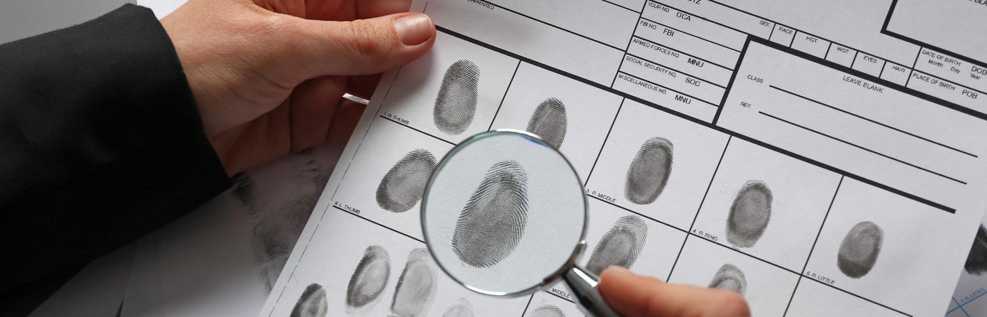 grado criminología online