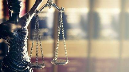 Especialización derecho online