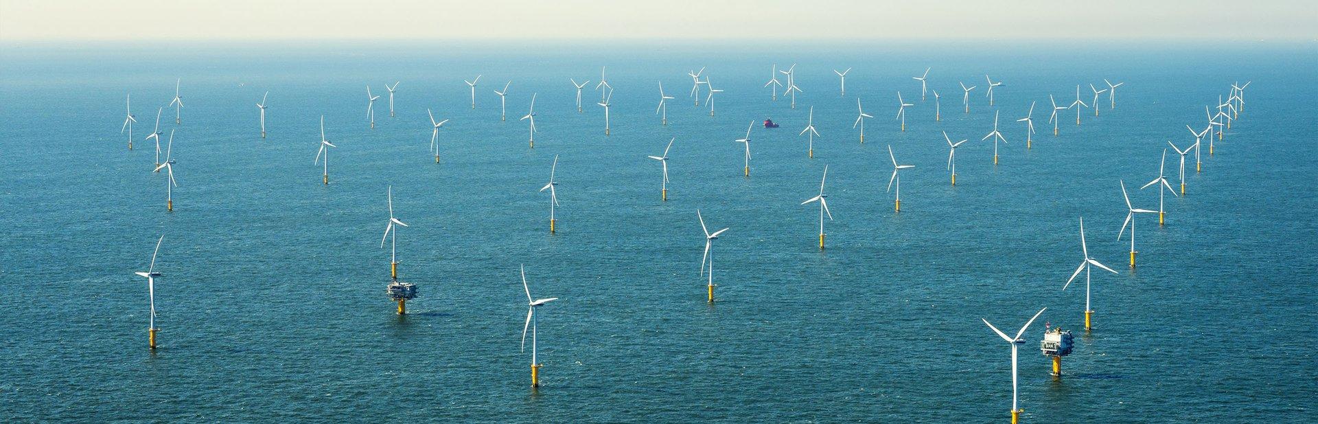 Cabecera Medio Ambiente y Sostenibilidad