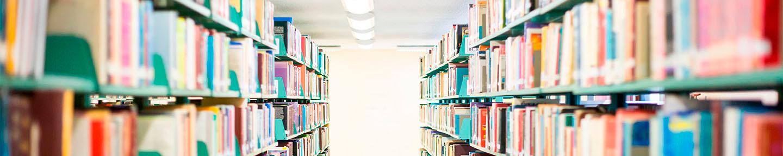 Catálogo biblioteca