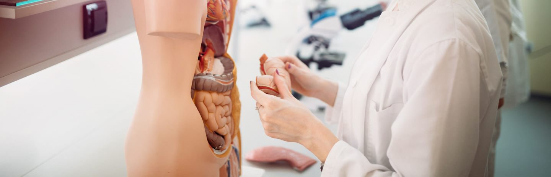Carrera de Medicina en Madrid