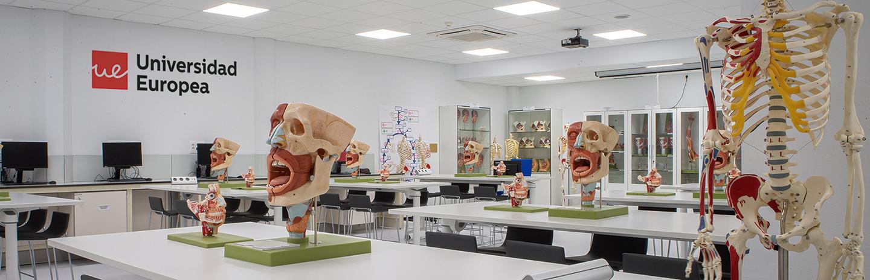 Laboratorio de Estructura y Función Universidad Europea de Madrid