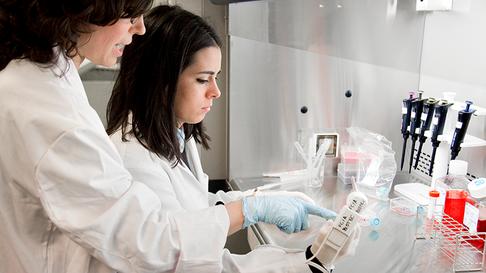 Laboratorio de Biotecnología Universidad Europea Madrid