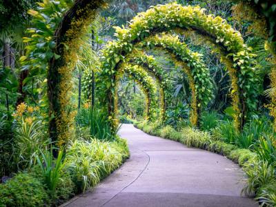 Daniëlle in .... Botanic Gardens, Singapore