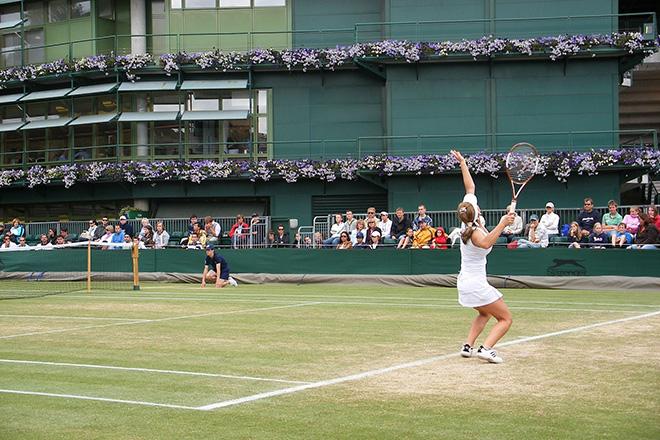 Wimbledon tennis competition