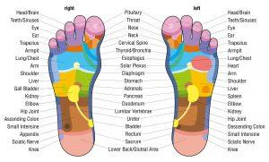 Foot Reflexology Chart @powerofpositivity