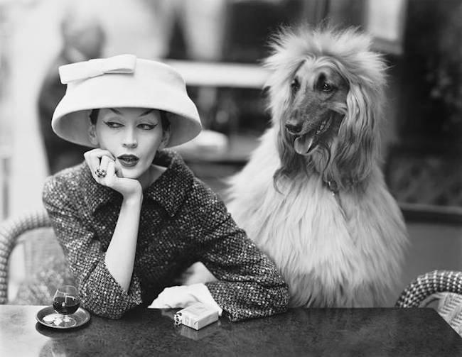 V&A fashion woman with dog