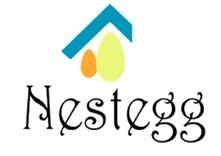 Nestegg Financial Services