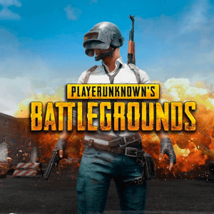 PLAYERUNKNOWN'S BATTLEGROUNDS (PUBG PC)