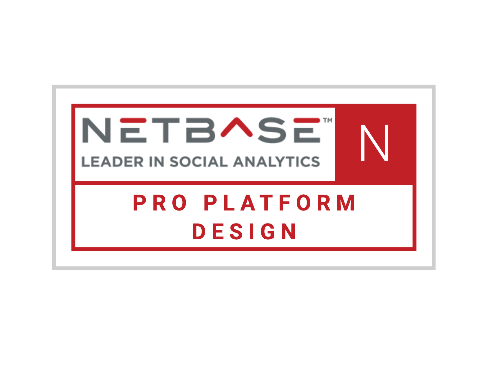 NetBase Pro: Overview
