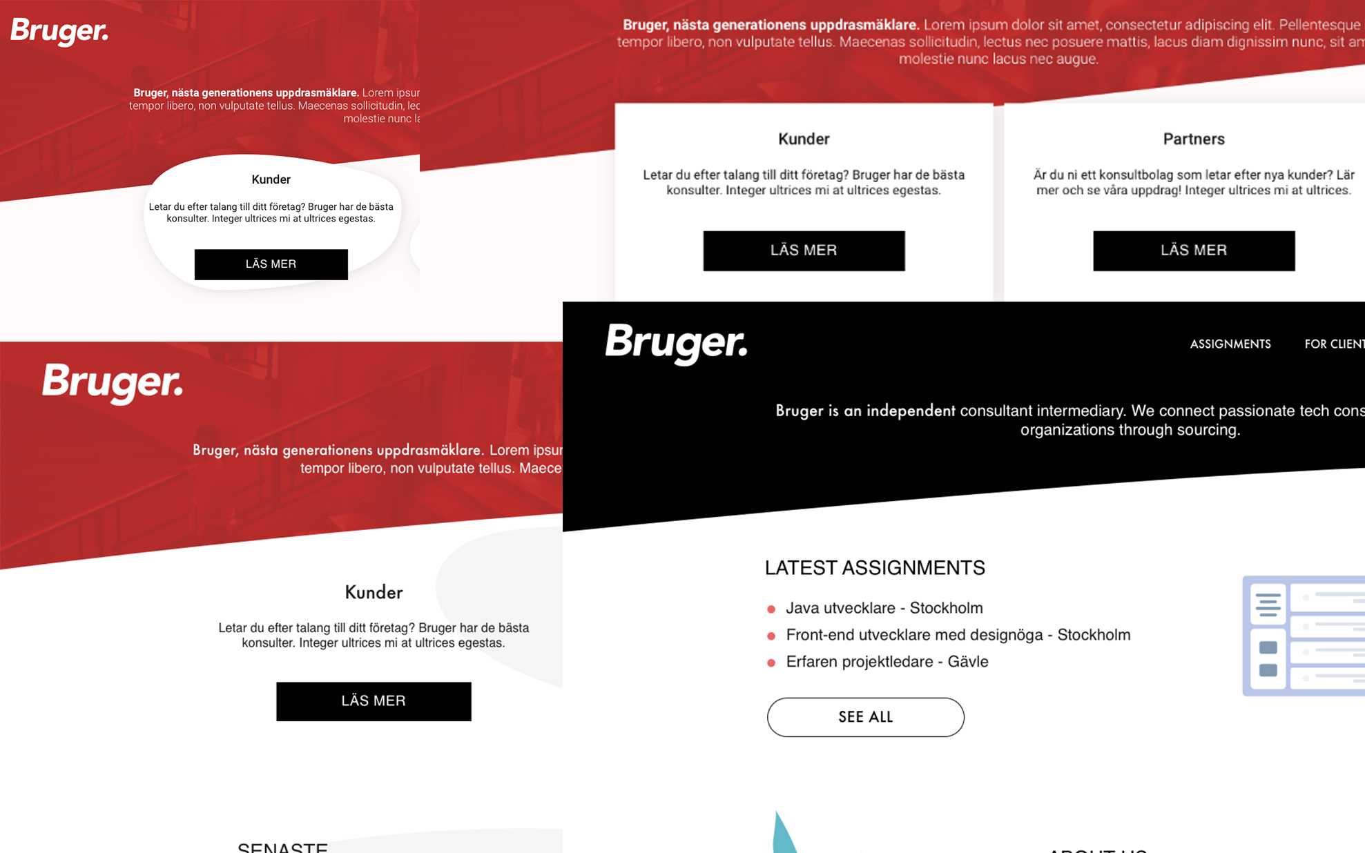 Different variations of the landing page and color schemes.