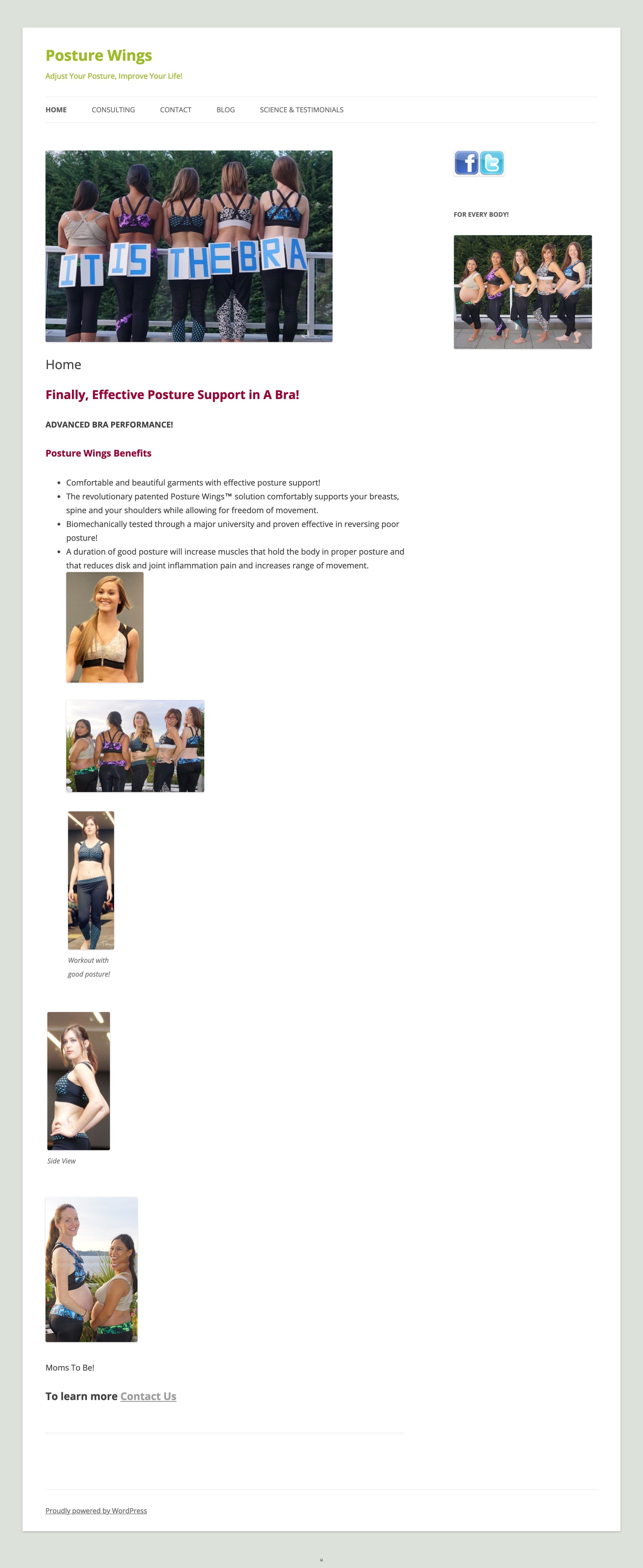 Website homepage before redesign.