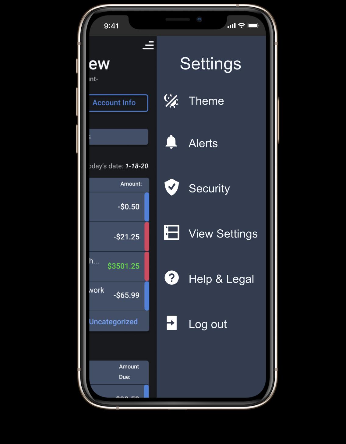 EZii: Envisioning a  multiple user finance app