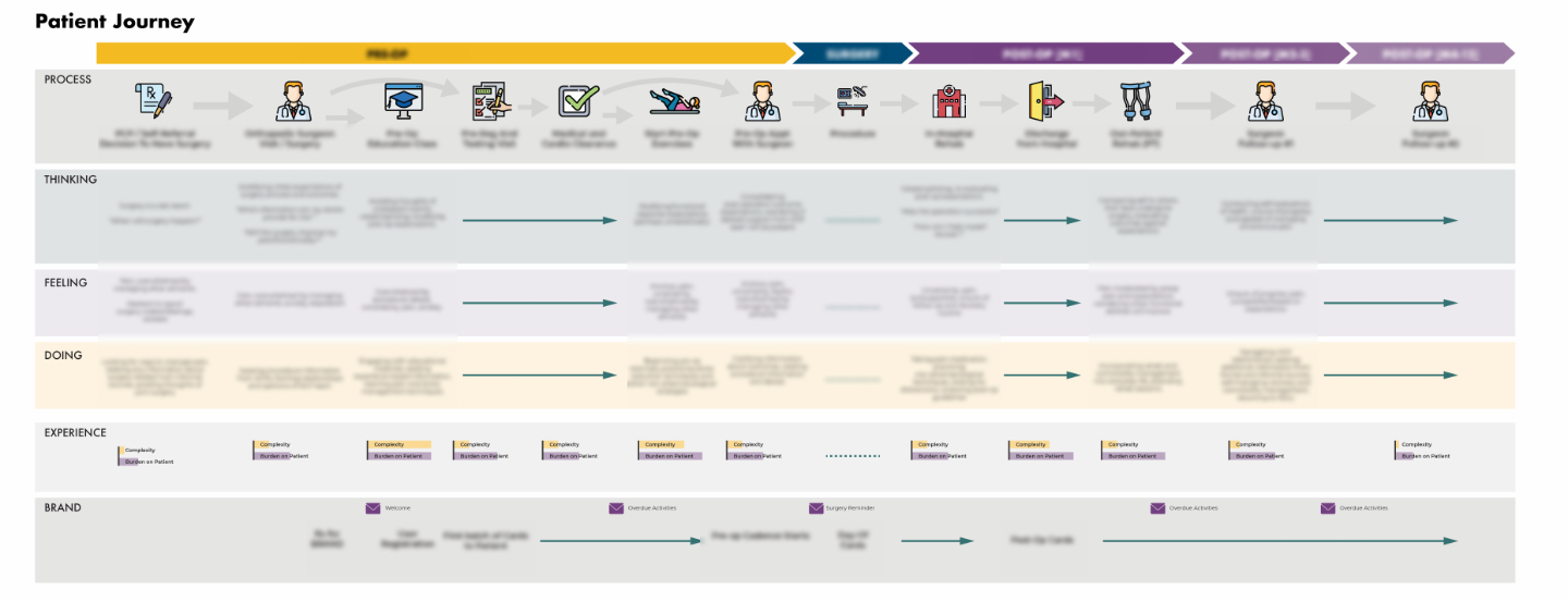 The User Journey (blurred to protect client IP)