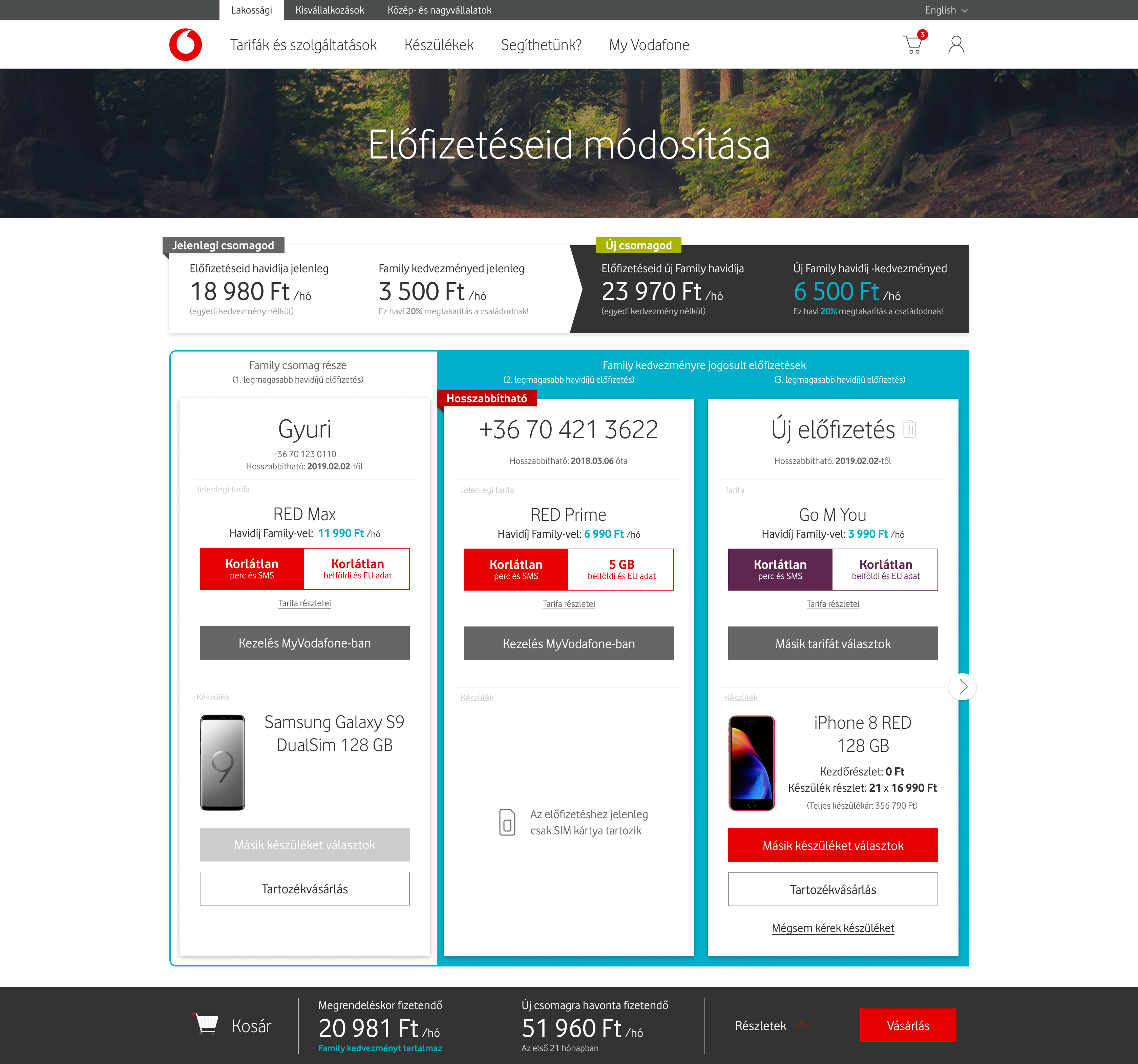 One screen of the Family bundle expansion mode of the subscription dashboard. Most buttons lead to multi-step interaction loops, since the checkout step next has to be started from here legally.The black summary bar is a floating element at the bottom of the viewport