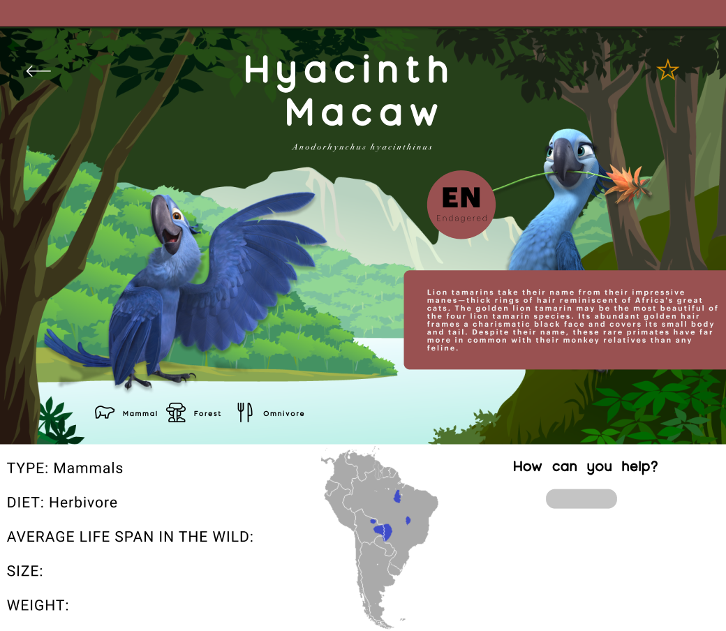 CUTE AND FUN ILLUSTRATIONS OF A HYACINTH MACAW