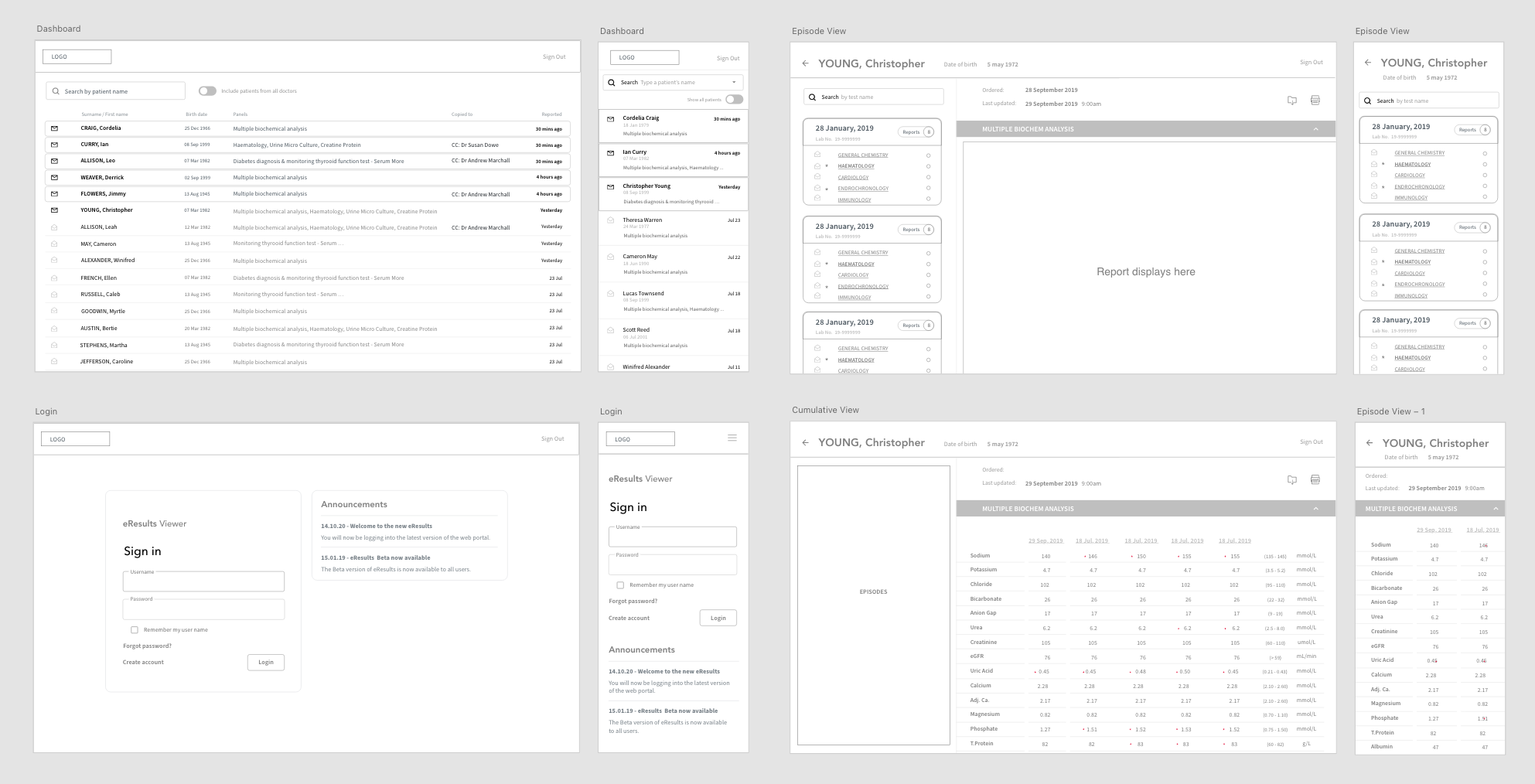 Example of a few wireframes from the project