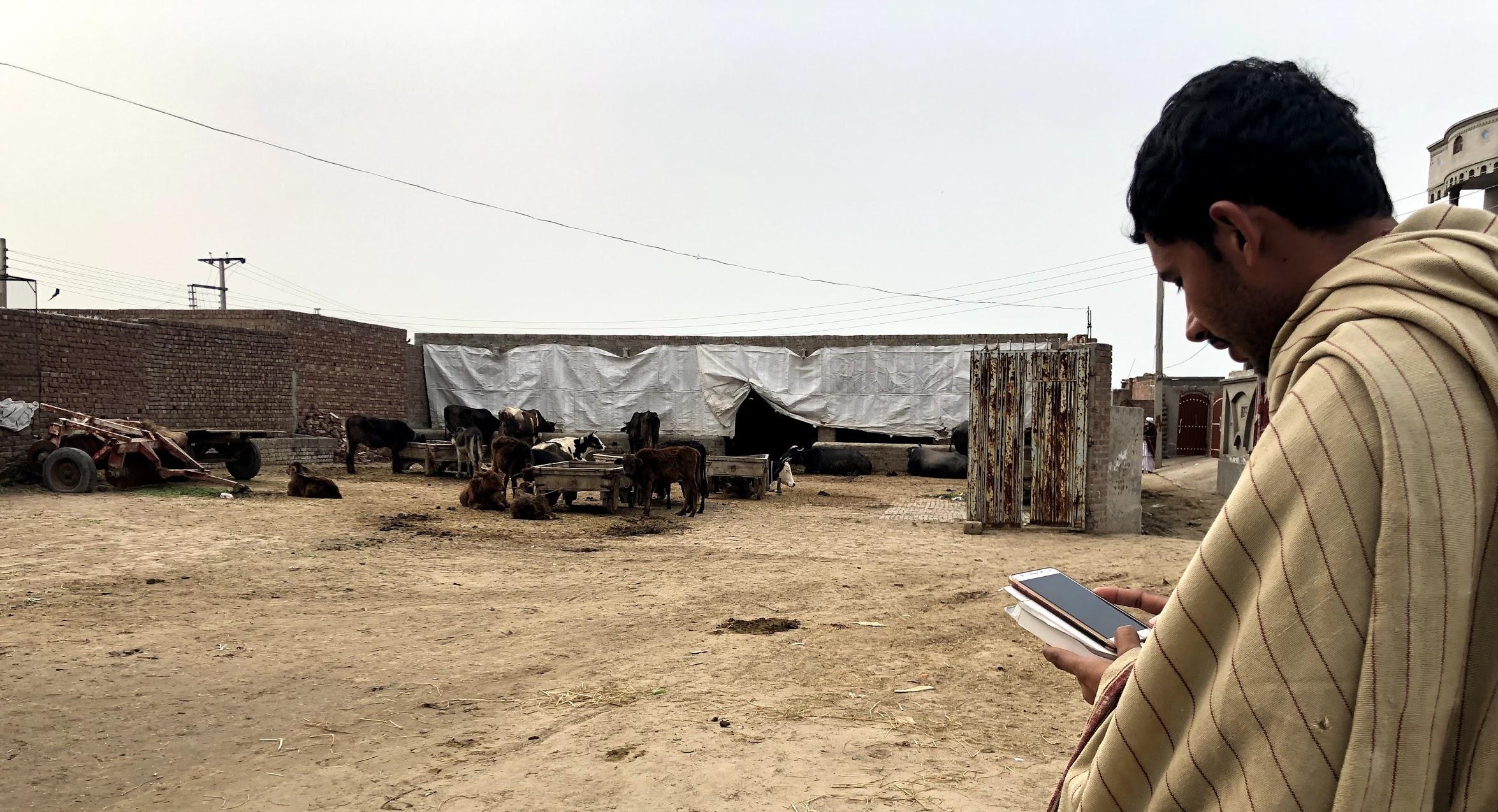 A young farmer testing the existing Ricult farmer application (Khudian Khan, Pakistan)