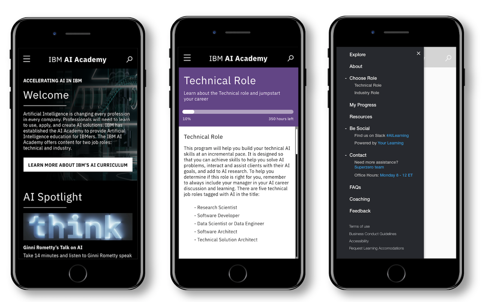 IBM AI Skills Academy