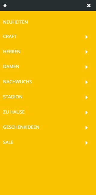 SG Dynamo Dresden Fanshop 2