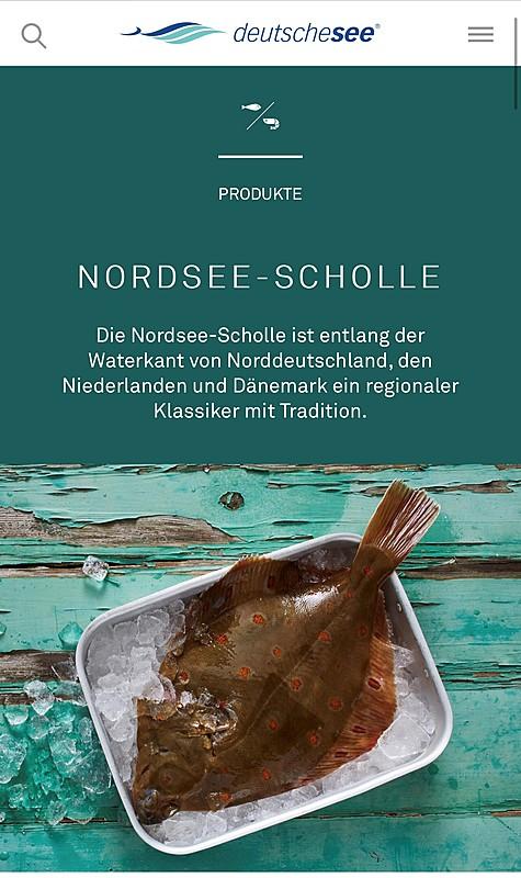 Deutsche See GmbH 5