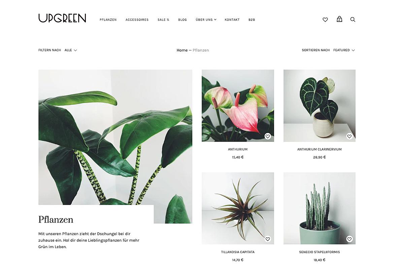 Upgreen 2