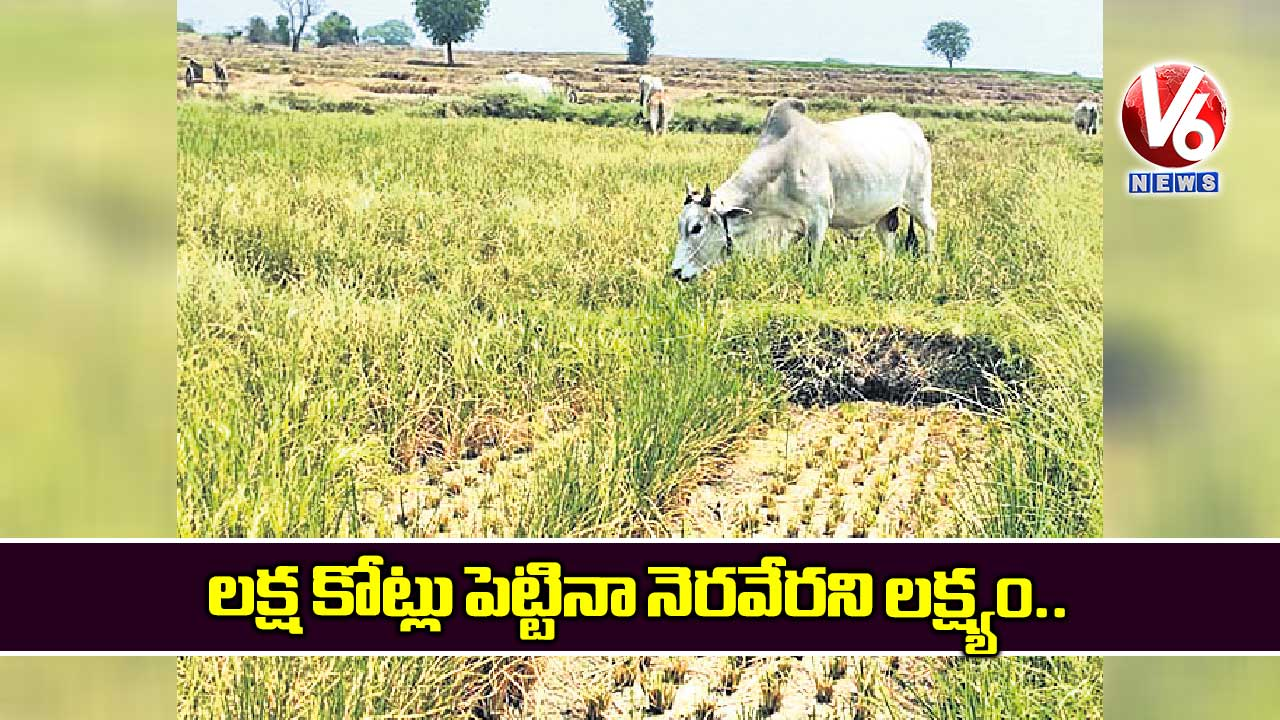 The-fields-under-Kaleswaram-are-drying-up-despite-spending-lakhs-of-crores_D7U9qle3cP.jpg