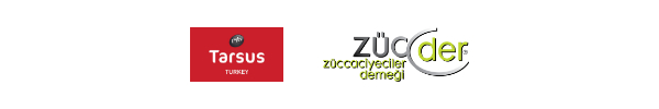 Ürün tedarik sürecine yeni bir bakış açısı geitren Zuchex Sourcing Week, sektörün 2020 yılı içerisinde ihtiyaç duyduğu fırsatları sundu...