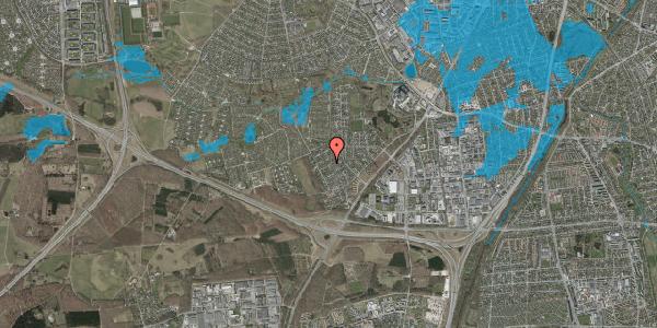 Oversvømmelsesrisiko fra vandløb på Bjergbakkevej 186, 2600 Glostrup