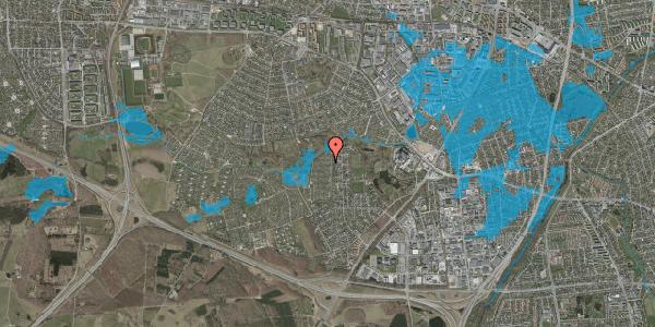 Oversvømmelsesrisiko fra vandløb på Vængedalen 807, 2600 Glostrup