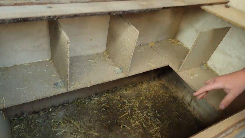Poulailler retirer la litière