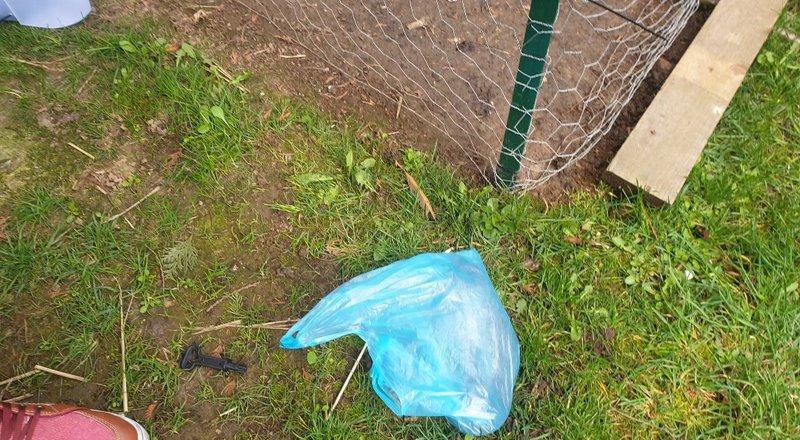 Récupéré le rat mort dans un sac poubelle