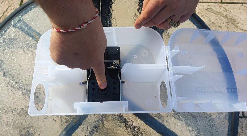 Tapette rat plastique