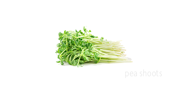 Greens-Images-Pea
