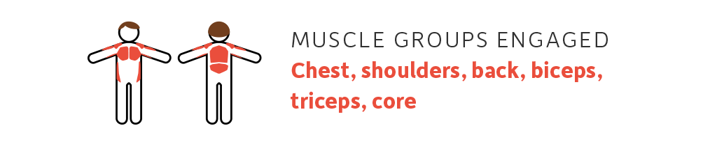muscle groups triceps